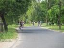 Falunap 2012_17