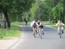 Falunap 2012_19