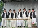 Nepzenei_fesztival2010_14